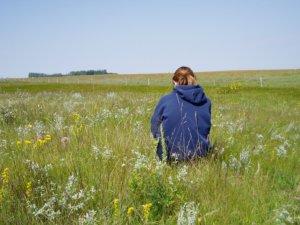 Mixed grass prairie near Lyleton. Photo by M. Kowalchuk